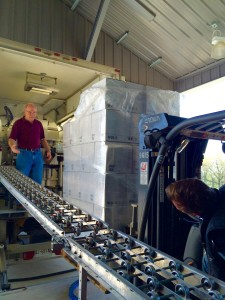 Placing bottles on conveyor CCW bottling